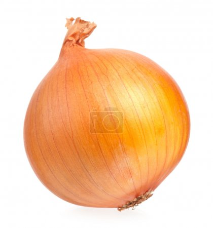 Photo for One yellow onion isolated on white background cutout - Royalty Free Image