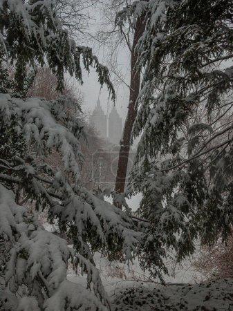 Photo pour Central Park en hiver - image libre de droit