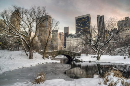 Gapstow bridge Central Park, New York City in winter