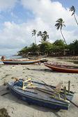 Colorful Brazilian Jangada Fishing Boats Jericoacoara