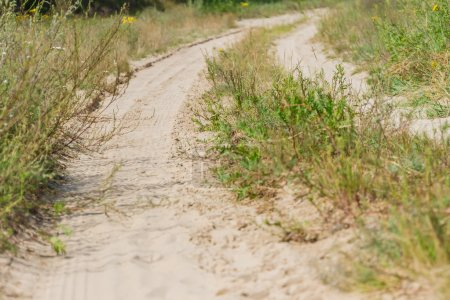 close up of rural countryside dirty road