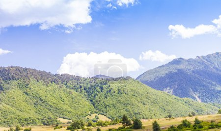 Beautiful view of alpine meadows. Upper Svaneti, Georgia, Europe