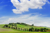 tuscany landscape panoramic view with hills and cypresses, toscana, italy