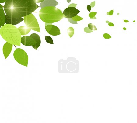 Illustration for Vector illustration of natural green background with leaf fall leaves - Royalty Free Image