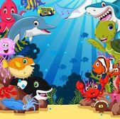 Legrační mořských živočichů karikatura sada