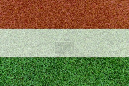 Football field textured by Hungary  national flag on euro 2016