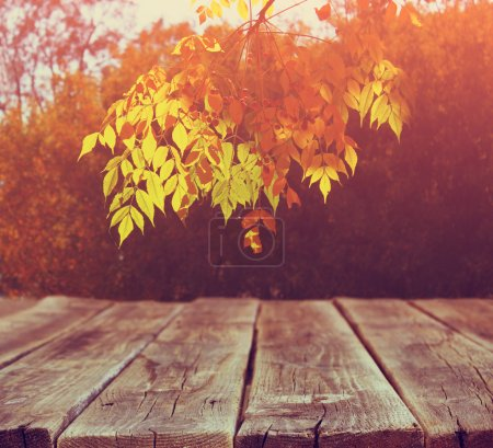 Image of front rustic wood boards and background of fall leaves in forest