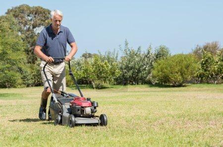 Senior gardener mowing