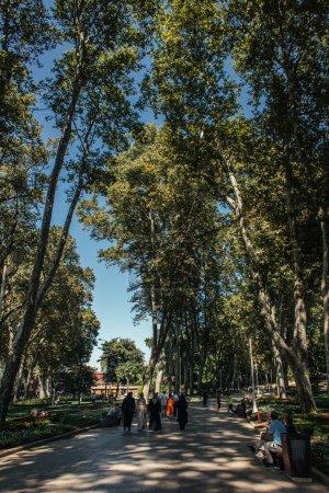 ISTANBUL, TURKEY - NOVEMBER 12, 2020: People walking on alley near tees in park