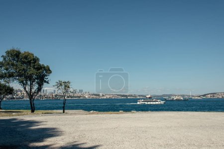 Trees on seafront and ships on water in Istanbul, Turkey