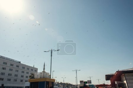 Low angle view of birds flying in sky above urban street in Istanbul, Turkey