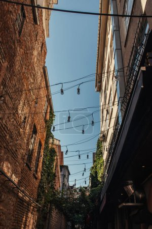 Photo for Low angle view of lightbulbs on wires between buildings in Istanbul, Turkey - Royalty Free Image
