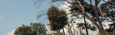 Bäume in der Nähe des Uhrturms des Dolmabahce-Palastes in Istanbul, Türkei, Banner