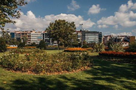 Flowerbeds on meadow on urban street in Istanbul, Turkey