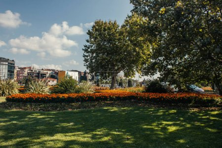 Flowers and trees on lawn with sunlight on street in Istanbul, Turkey