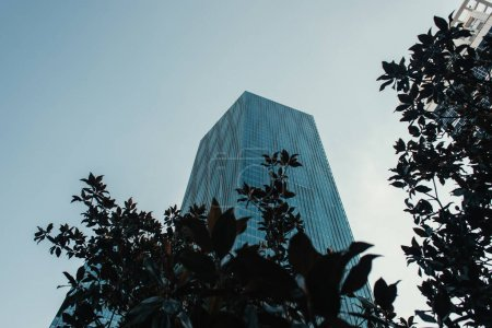Photo for Low angle view of skyscraper near trees against clear sky - Royalty Free Image
