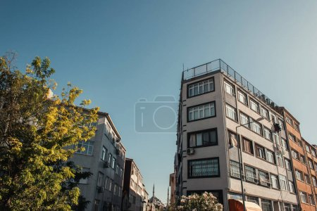Photo for Blue sky over contemporary buildings and trees - Royalty Free Image