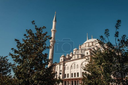 green trees near Mihrimah Sultan Mosque against clear sky, Istanbul, Turkey