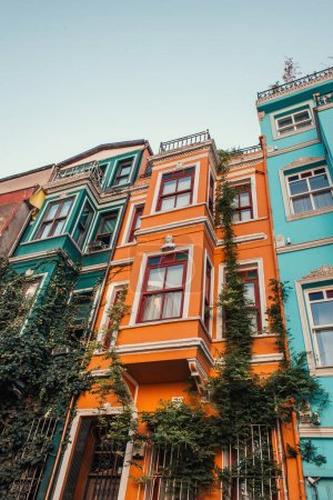low angle view of multicolored buildings with green ivy in Balat, Istanbul, Turkey