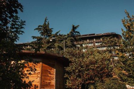Photo pour Arbres verts près de dépendances en bois et maison sur colline - image libre de droit