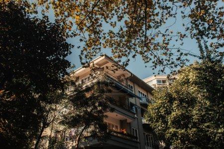 grüne Bäume in der Nähe von Haus mit großen Balkonen