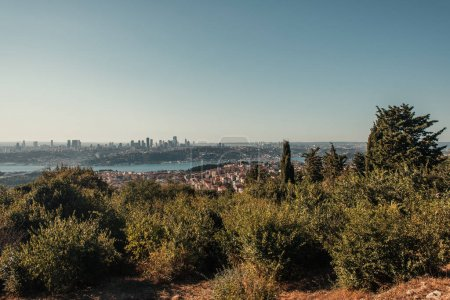 green trees on hill, and city view with Bosphorus strait