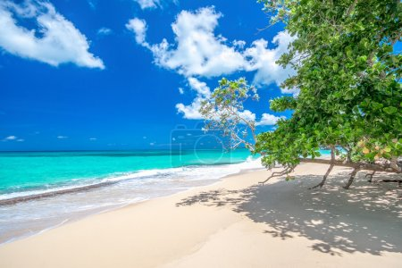 Paradise beach Playa Rincon, considered one of the 10 top beaches in Caribbean, Dominican Republic, near Las Galeras