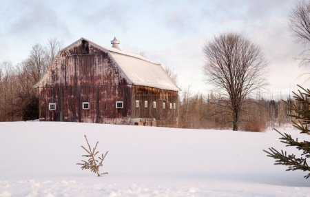 Wintertime Farm Field Barn Agricultural Structure Ranch Building