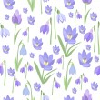 Early spring purple crocus and snowdrops nature be...
