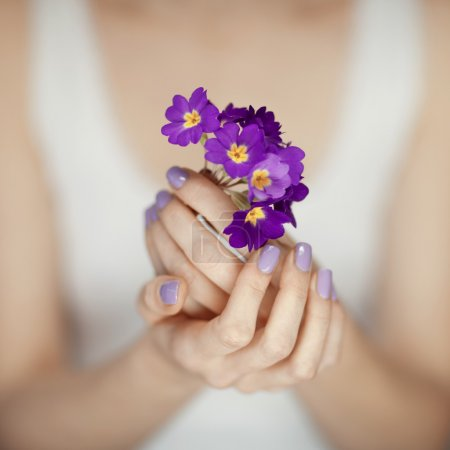 Woman hands with beautiful fingernails in purple holding flowers