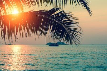 Sunset on the tropical coast.