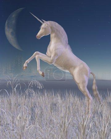 Winter Unicorn - rearing