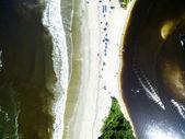 Exotic Beach in Brazil