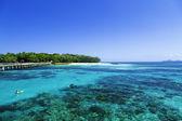 Das Great Barrier Reef in Queensland State, Australien