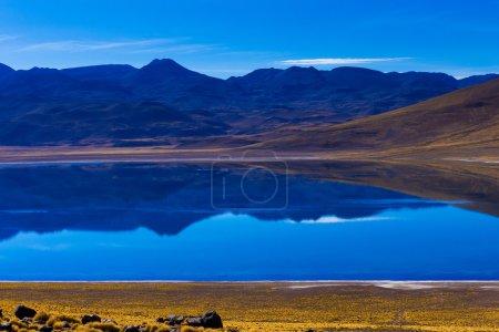 Altiplanic lagoon in Chile