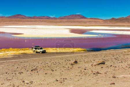 Red Lagoon (Lagoa Colorada) in Bolivia, South America