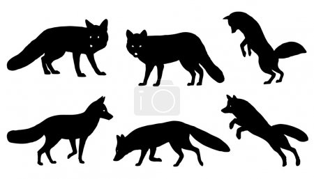 Fox silhouettes on the white background...