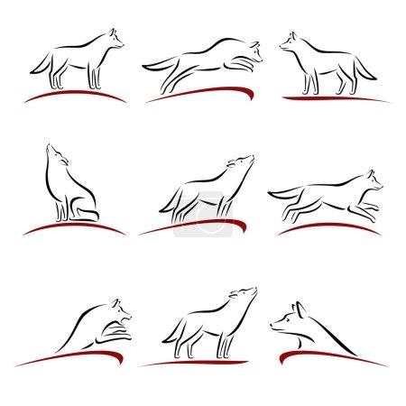 Wolf set. Vector