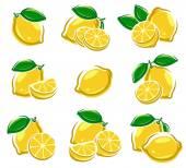 Lemon set Vector illustration