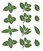 Mint leaves label set