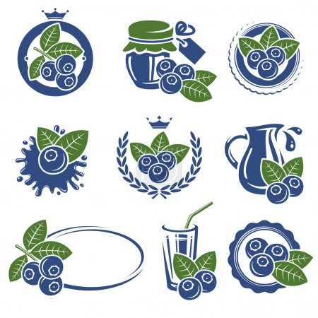 Blueberries set.
