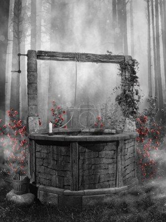 Photo pour Paysage forestier noir et blanc avec un vieux puits et des roses rouges - image libre de droit