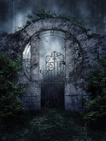 Photo for Dark garden gate with vines and shrubs at night - Royalty Free Image
