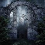 Dark garden gate with vines and shrubs at night...