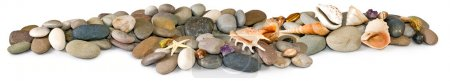 Isolated image of many stones and sea shells