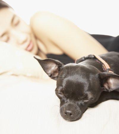 Asian woman and dog sleeping
