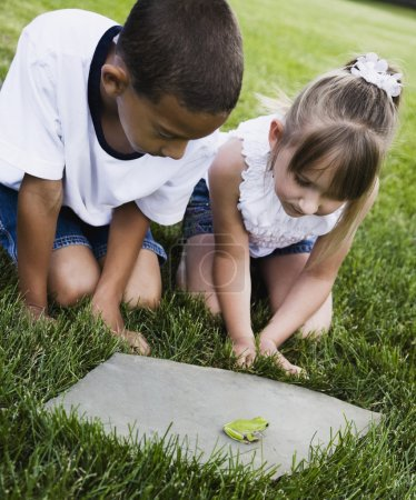 Multi-ethnic children looking at frog