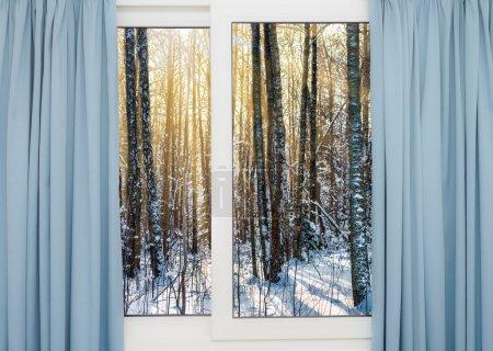 Photo pour Vue depuis la fenêtre d'une forêt d'hiver - image libre de droit