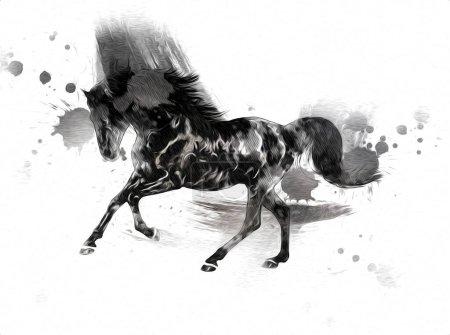 Photo pour Illustration d'art de cheval coloré peinture grunge - image libre de droit