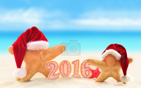 New year 2016 sign with starfish in Santa Claus hat